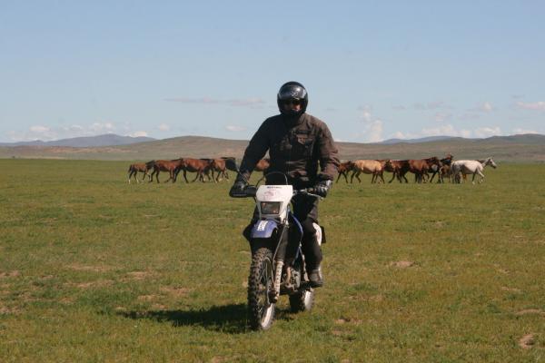 Mongolei (55)