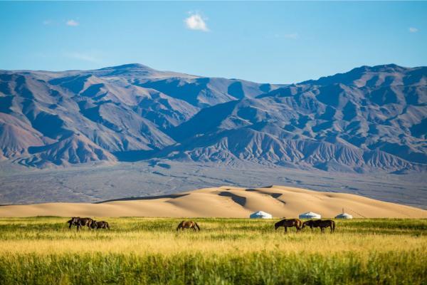 Mongolei (8)