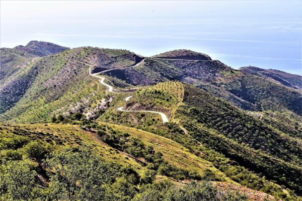 Sierra Nevada (10)