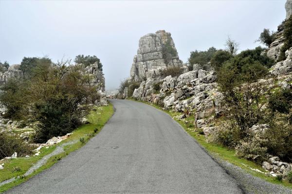 Sierra Nevada (24)